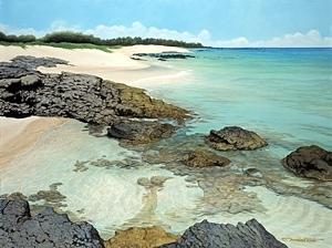 Brian Marshall White - Beach At Waikaloa