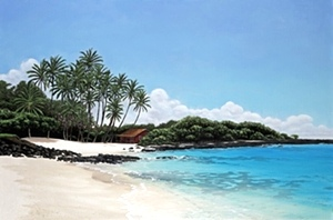 Brian Marshall White - The Artist From Maui